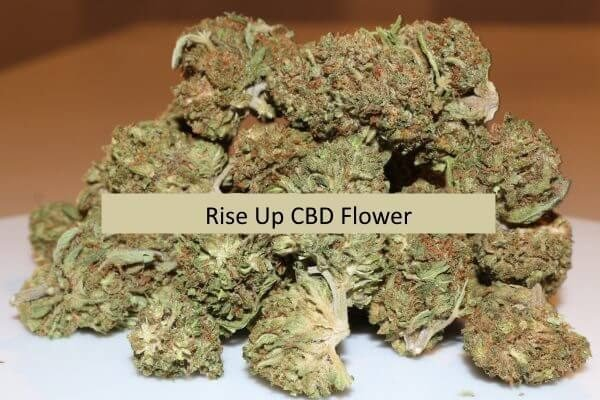 Rise Up CBD Flower