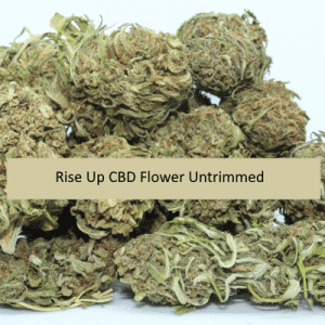 Rise-Up-CBD-Flower-Untrimmed