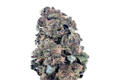 Purple Panties Hemp Flower
