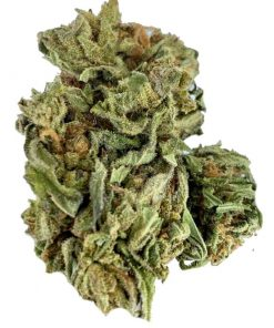 Durban Poison Hemp Flower
